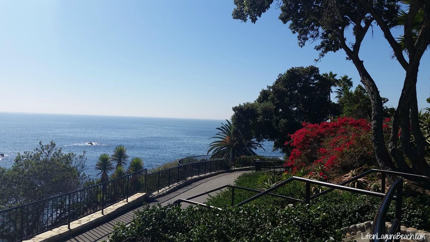 Life in Laguna Beach - Heisler Park